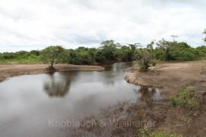 Boliviens Amazonasgebiet