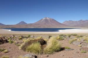 Laguna Miscanti, Region de Antofagasta, Atacamawüste, Chile