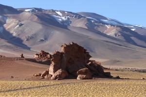 Dinosaurier, Ruta 23, Richtung Grenzübergang Paso Sico, Region de Antofagasta, Atacamawüste, Chile