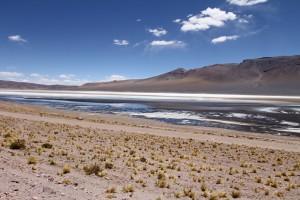 Salar, Reserva de Fauna y Flora Olaroz-Cauchani, Antofagasta, Argentinien