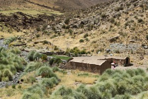 Hof an der RN 40, Provinz Salta, Argentinien