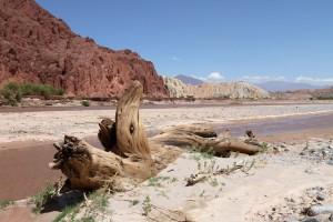 Rio Calchaqui, RP 44, Cafayate, Argentinien