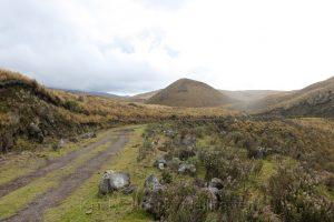 Straße durch Nationalpark Cotopaxi