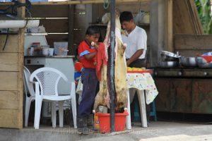Kind zerlegt Schwein, Pedernales, Ecuador