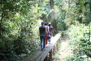 Dschungeltour, Cuyabeno, Amazonas, Ecuador