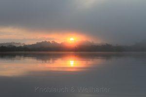 Sonnenaufgang am Lago Grande, Cuyabeno, Amazonas, Ecuador