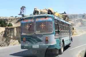 Mit Schafen beladener Bus auf der E 35, Ecuador